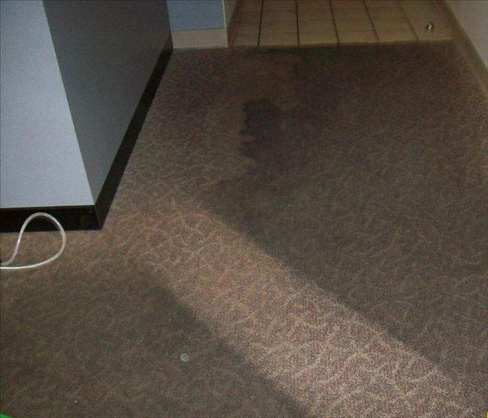 Heavily soot soiled carpeting with a single cleaning wand stroke showing fresh carpet pattern