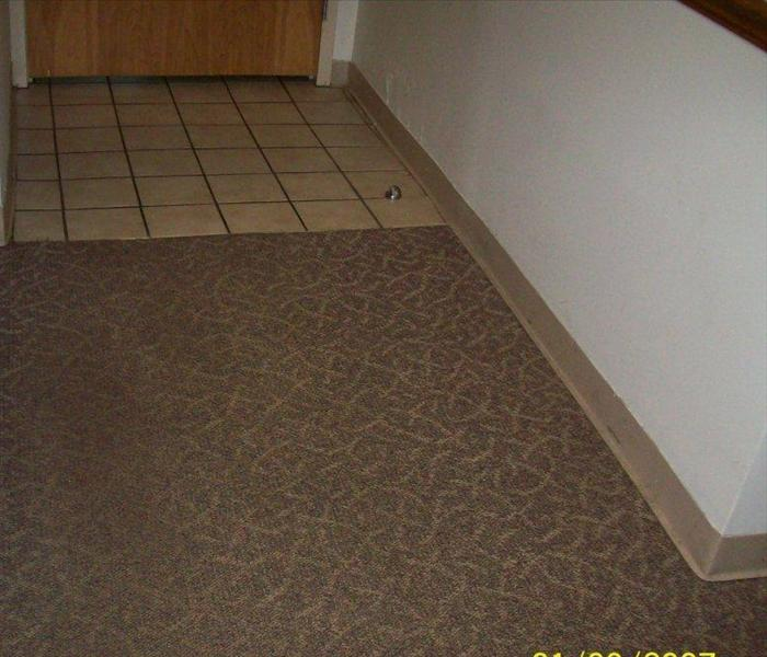 carpeting clean with no visible soil