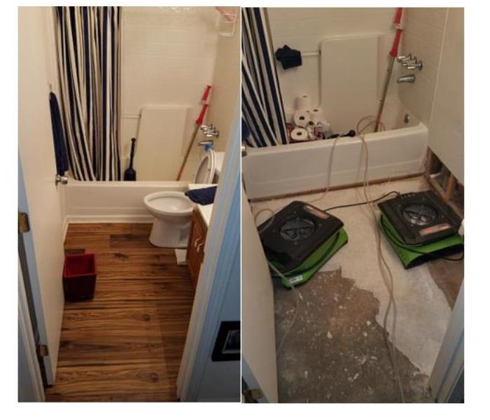 Bathroom is damaged by septic water backup