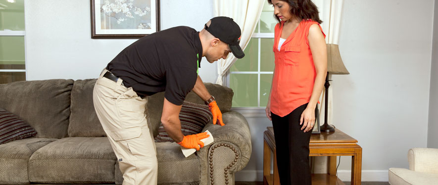 Toccoa, GA carpet upholstery cleaning